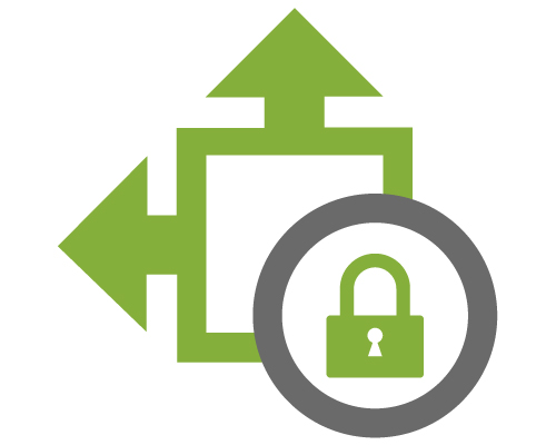 Security-Level-icon